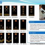 Reunión de la División de Formación y Perfeccionamiento con sindicatos policiales